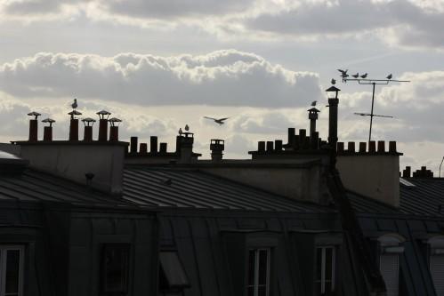 Hotel Le Quartier Bercy-Square Paris - View